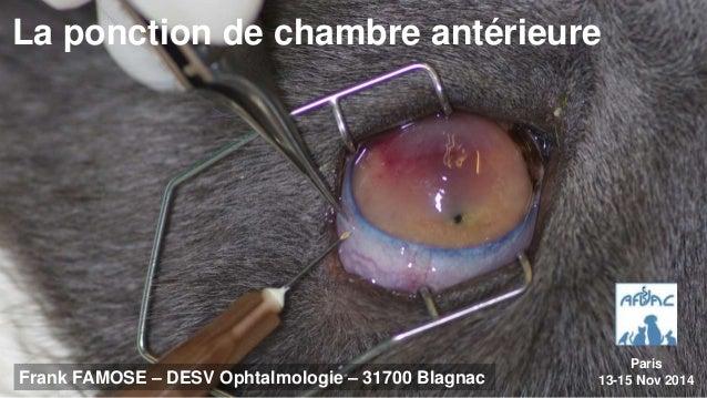 La ponction de chambre antérieure  Frank FAMOSE – DESV Ophtalmologie – 31700 Blagnac  Paris  13-15 Nov 2014