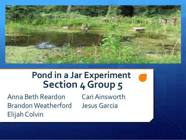 Pond in a Jar Experiment  Section 4 Group 5  Anna Beth Reardon Brandon Weatherford Elijah Colvin  Cari Ainsworth Jesus Gar...