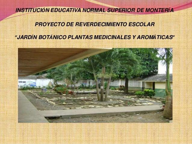 """INSTITUCIÓN EDUCATIVA NORMAL SUPERIOR DE MONTERÍA PROYECTO DE REVERDECIMIENTO ESCOLAR """"JARDÍN BOTÁNICO PLANTAS MEDICINALES..."""