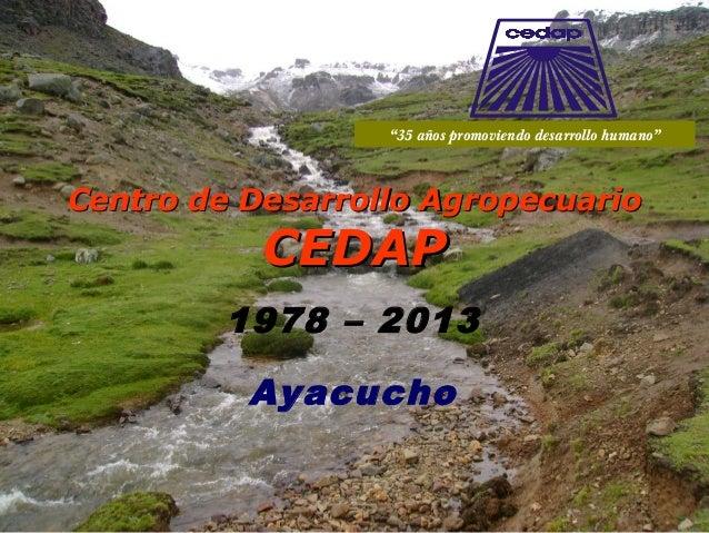 """1978 – 2013 Ayacucho Centro de Desarrollo AgropecuarioCentro de Desarrollo Agropecuario CEDAPCEDAP """"35 años promoviendo de..."""