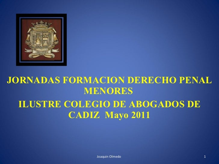 JORNADAS FORMACION DERECHO PENAL MENORES  ILUSTRE COLEGIO DE ABOGADOS DE CADIZ  Mayo 2011 Joaquin Olmedo