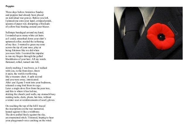 poem comparison poppies and futility sadness and loss I like to compare futility with the fallen leaves or next to of course god america i but it didn't fit aye me, why am i here and although the question is ostensibly about her memory loss 21 thoughts on  sample gcse english literature poetry essay.