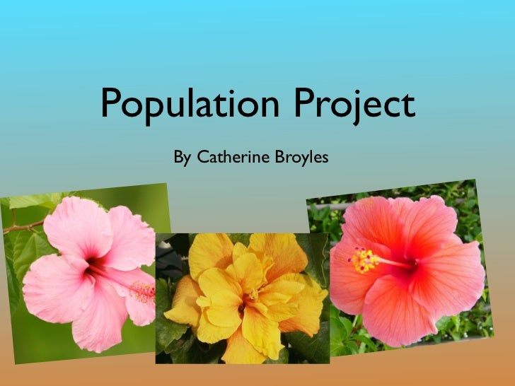 Population Project    By Catherine Broyles