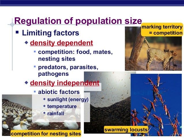 2020 Other Images Density Independent Limiting Factors Examples
