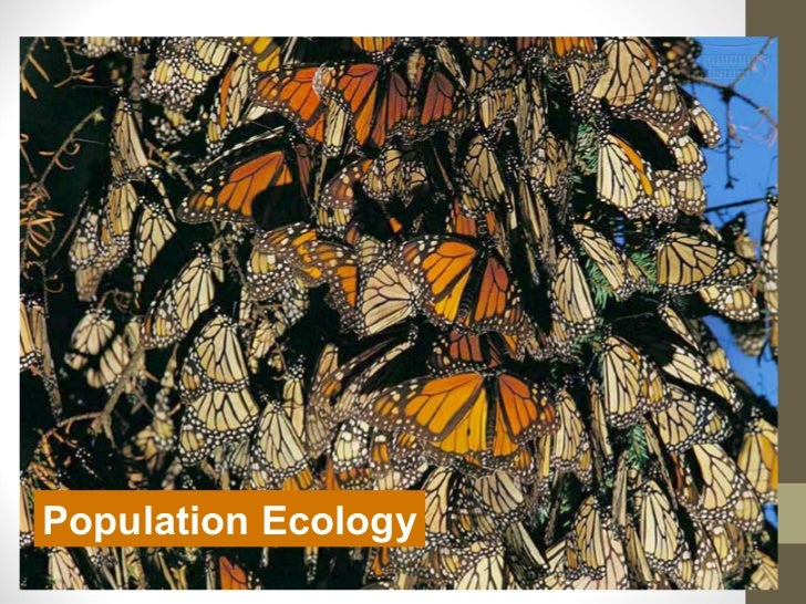 Population Ecology               2005-2006