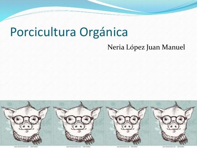 Porcicultura orgánica