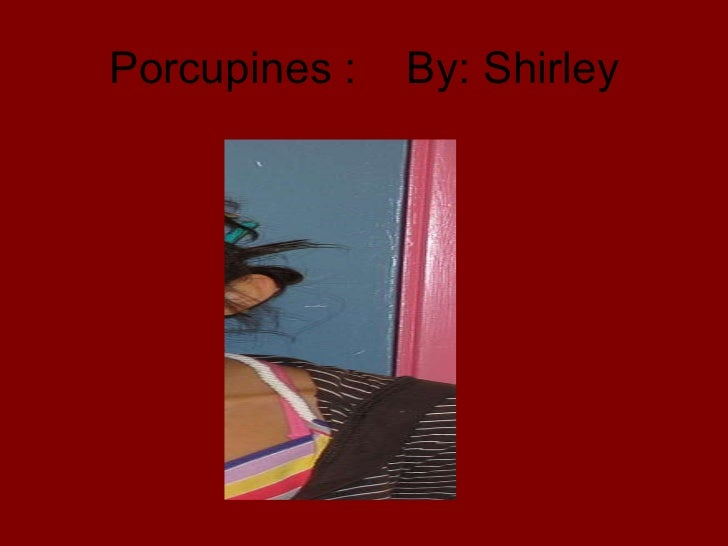 Porcupines :  By: Shirley