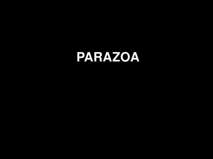 PARAZOA