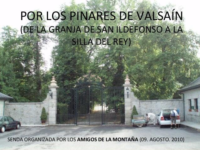 SENDA ORGANIZADA POR LOS AMIGOS DE LA MONTAÑA (09. AGOSTO. 2010) POR LOS PINARES DE VALSAÍN (DE LA GRANJA DE SAN ILDEFONSO...