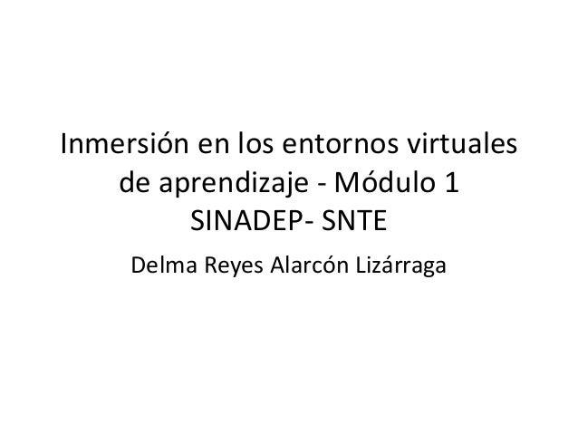 Inmersión en los entornos virtuales  de aprendizaje - Módulo 1  SINADEP- SNTE  Delma Reyes Alarcón Lizárraga
