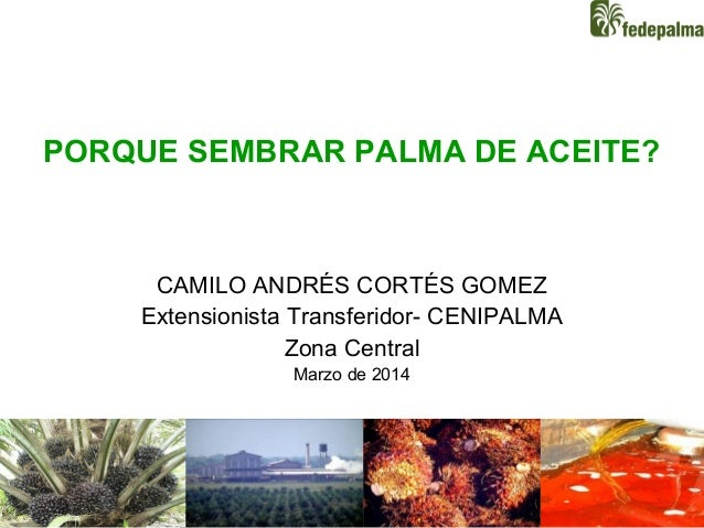 1 PORQUE SEMBRAR PALMA DE ACEITE? CAMILO ANDRÉS CORTÉS GOMEZ Extensionista Transferidor- CENIPALMA Zona Central Marzo de 2...