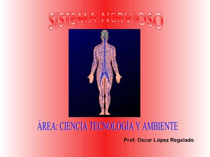 SISTEMA NERVIOSO Prof. Oscar López Regalado ÁREA: CIENCIA TECNOLOGÍA Y AMBIENTE