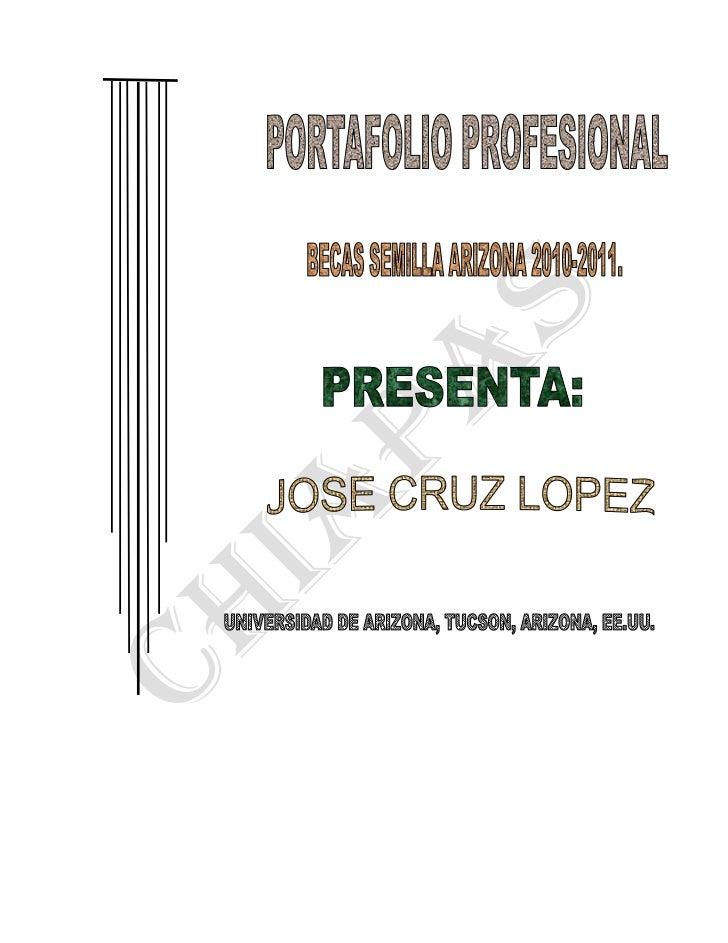 Portafolio profesional mex