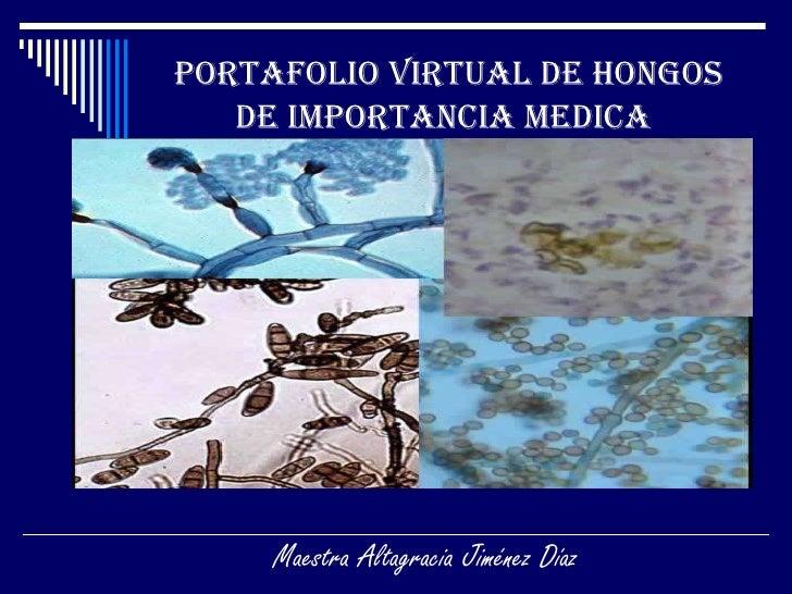 Portafolio Virtual de Hongos de importancia Medica   Maestra Altagracia Jiménez Díaz