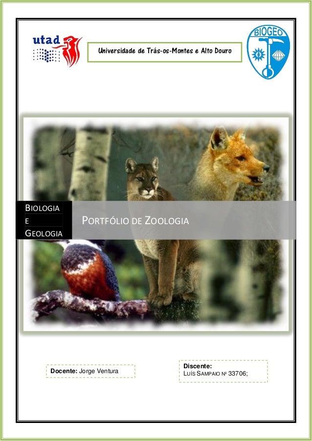 Portfólio de zoologia