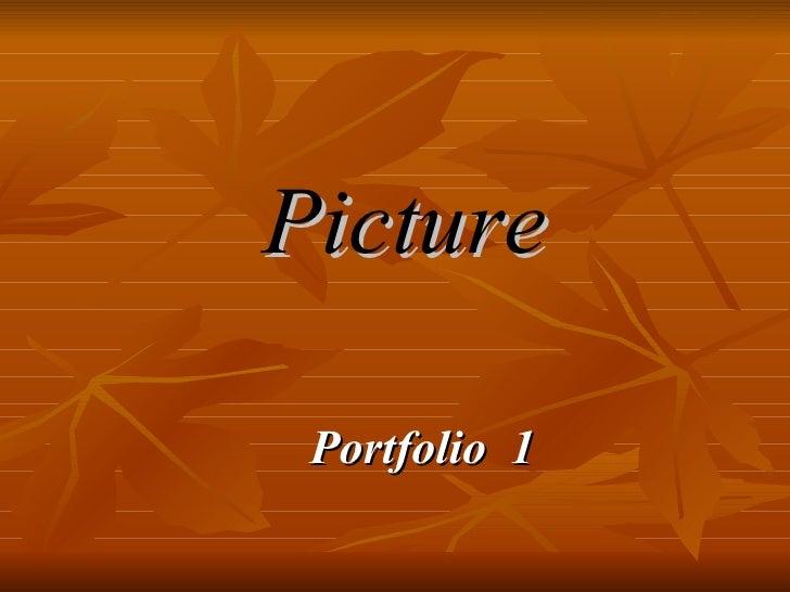 Picture Portfolio  1