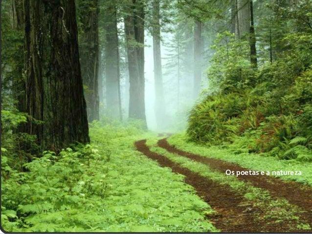 Os poetas e a natureza