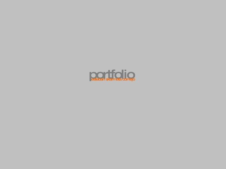 portfolio esteban skarmeta cornejo
