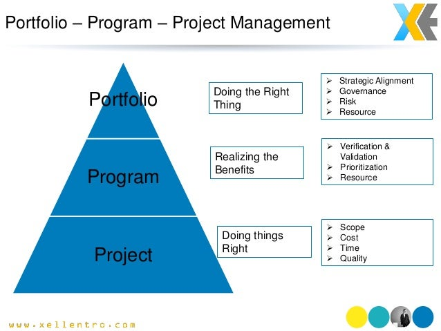 Program project management portfolio program project doing the right