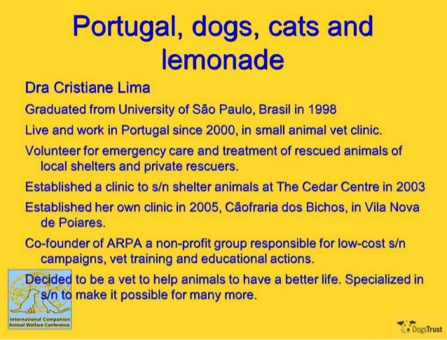 ICAWC 2013 - Portugal, Dogs, Cats and Lemonade - Cristiane Lima