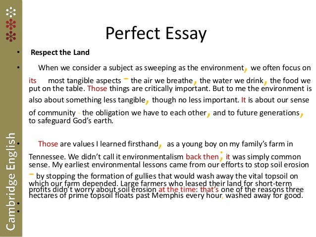 essay on what respect means