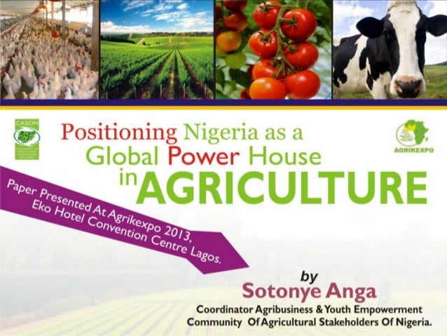 Positioning nigeria as a global power house in agriculture by sotonye anga