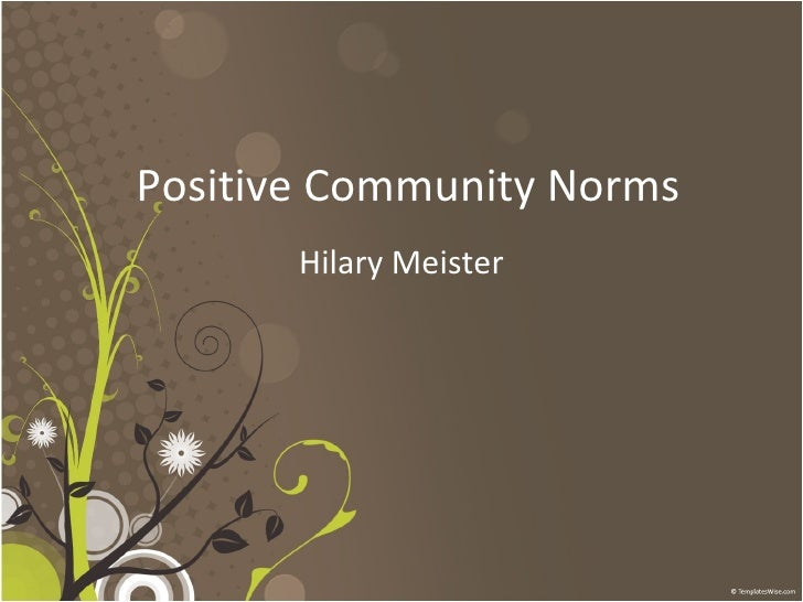 Positive Community Norms Hilary Meister
