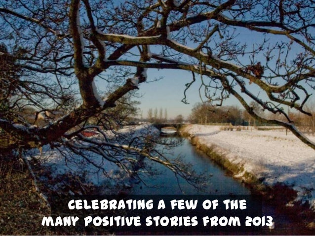 Celebrating a few of the many positive stories from 2013