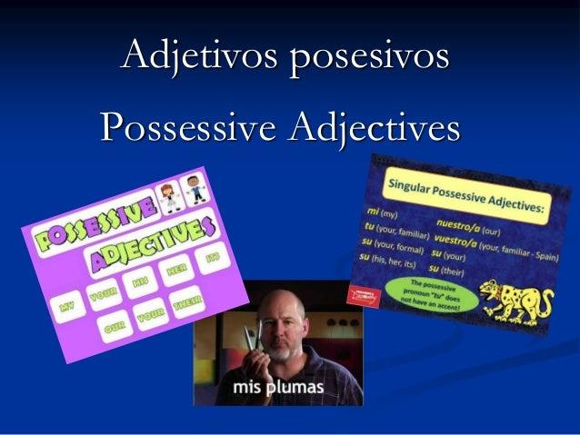 Adjetivos posesivosPossessive Adjectives