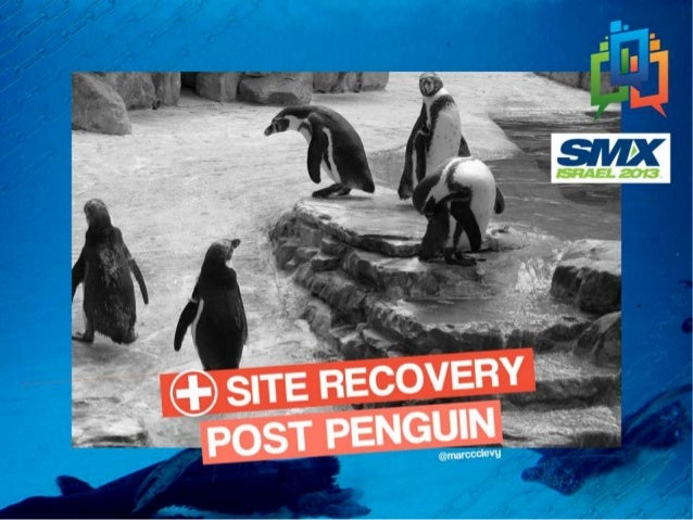 Post penguin-recovery-marc-levy