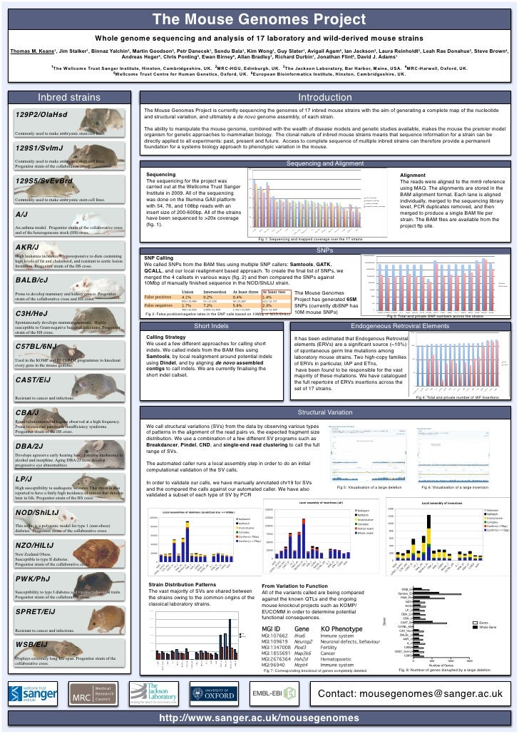 Mouse Genomes Poster - Genetics 2010
