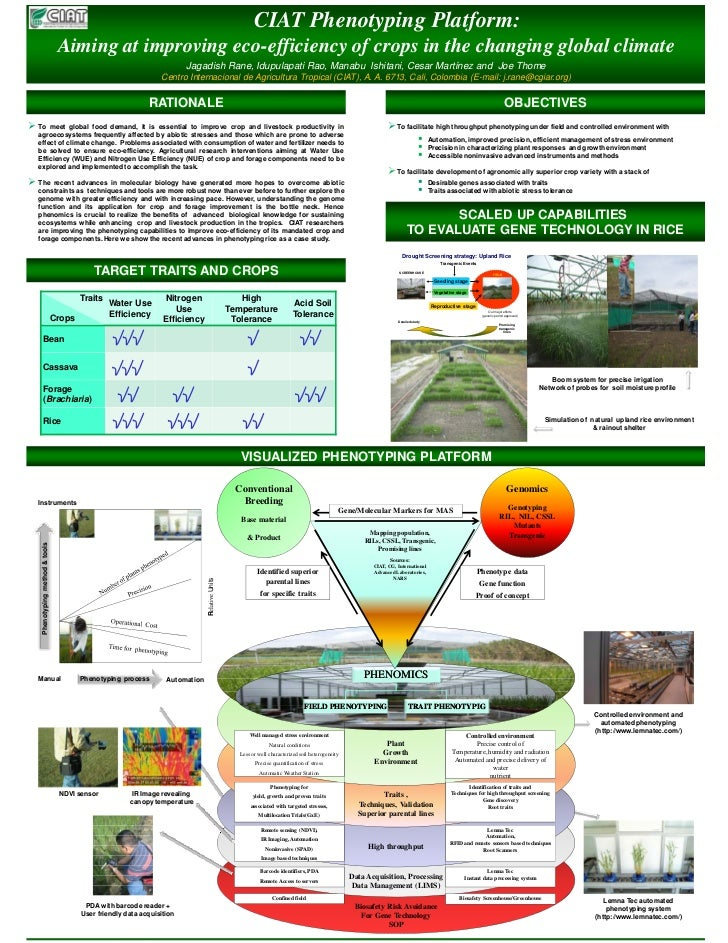 CIAT Phenotyping Platform:                                Aiming at improving eco-efficiency of crops in the changing glob...