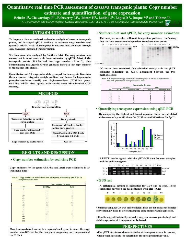 Quantitative real time PCR assessment of cassava transgenic plants: Copy number                   estimate and quantificat...