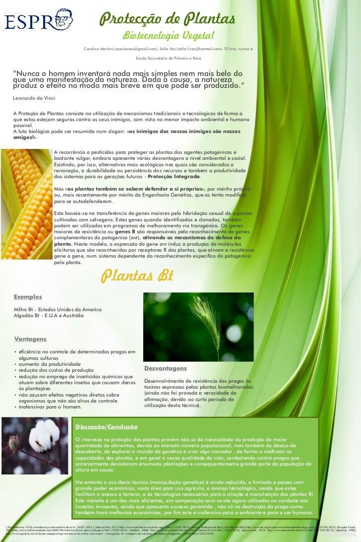 Proteção das plantas