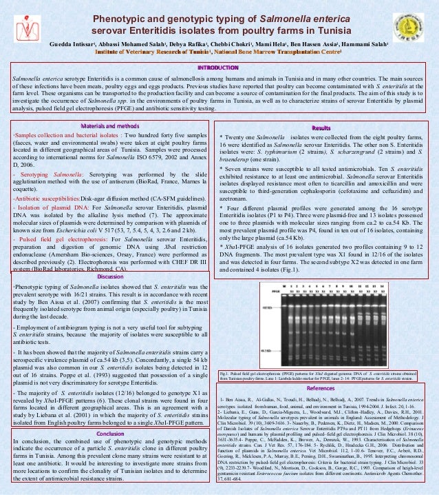 Phenotypic and genotypic typing of Salmonella entericaserovar Enteritidis isolates from poultry farms in TunisiaGuedda Int...