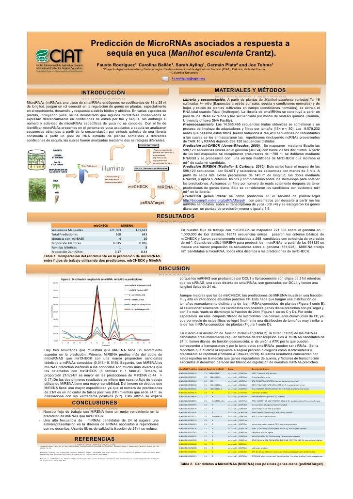 Predicción de MicroRNAs asociados a respuesta a                                                                          s...