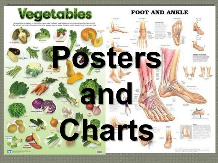 How to Use Charts and Posters?          Types of Charts          Besides flip charts, there          are other kinds of ch...