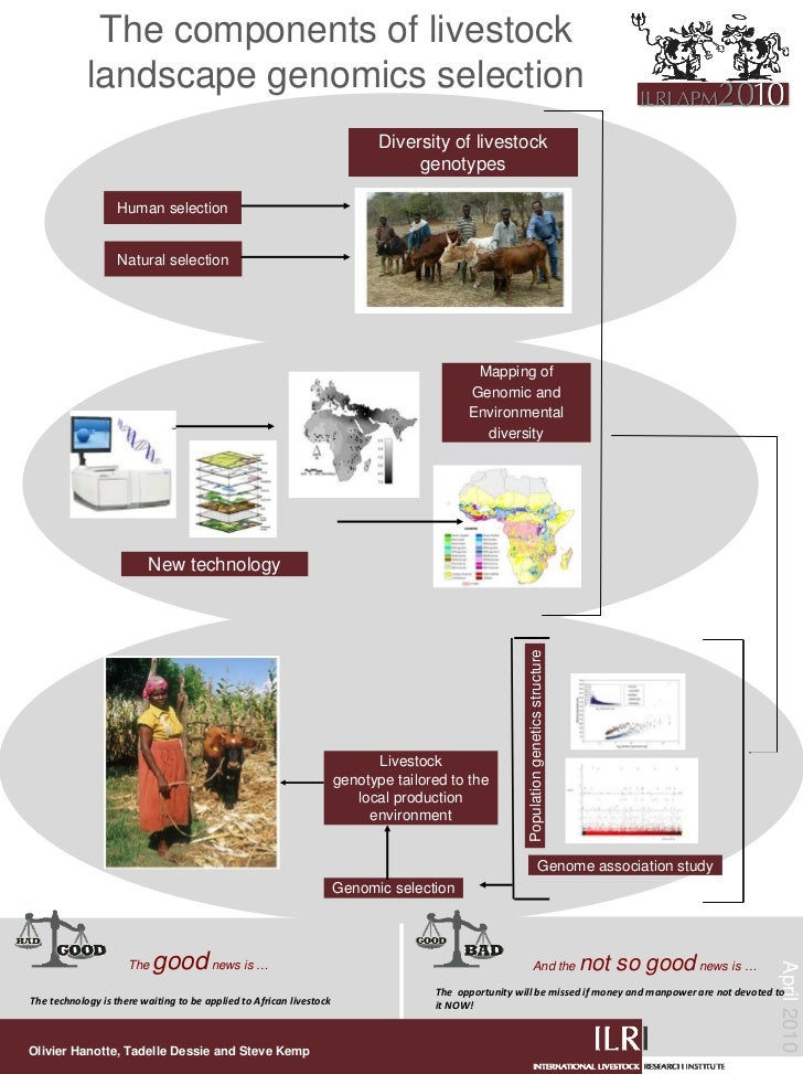 The components of livestock             landscape genomics selection                                                      ...