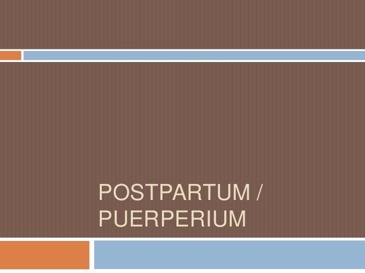 POSTPARTUM / PUERPERIUM<br />