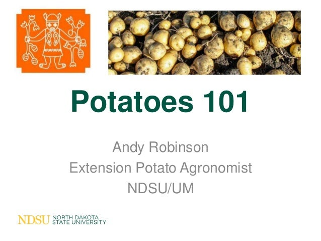 Potatoes 101      Andy RobinsonExtension Potato Agronomist        NDSU/UM