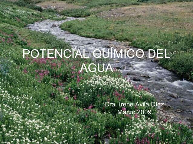POTENCIAL QUÍMICO DELAGUADra. Irene Ávila DíazMarzo 2009
