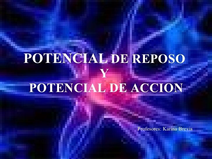 POTENCIAL  DE REPOSO  Y  POTENCIAL DE ACCION Profesores: Karina Brevis