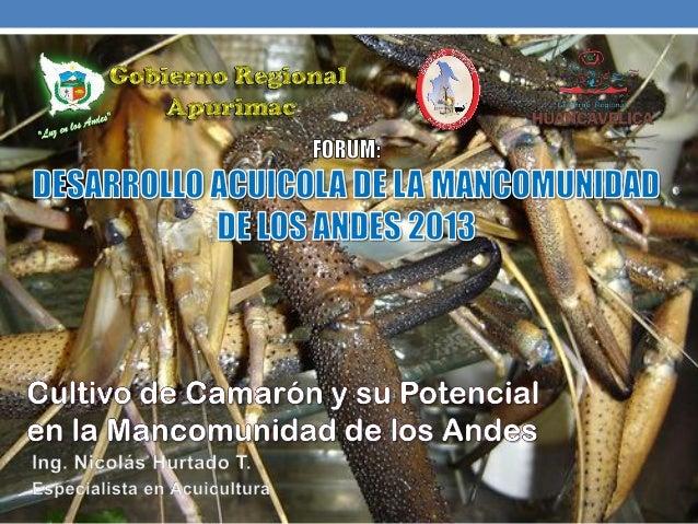 Agenda:AntecedentesBiologíaCultivoConclusiones