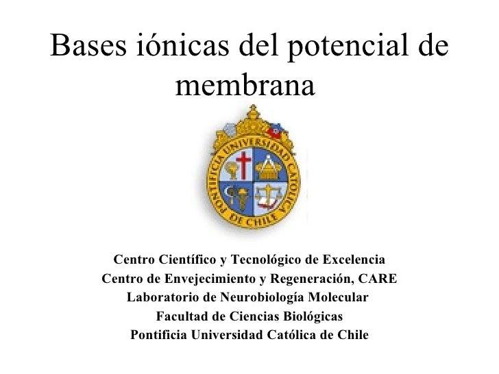 Potencial de membrana 2011