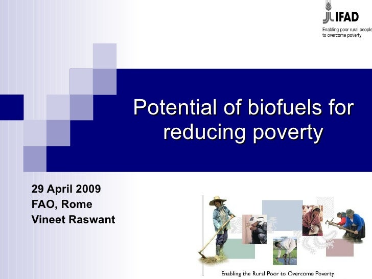Potential of biofuels for reducing poverty 29 April 2009 FAO, Rome Vineet Raswant