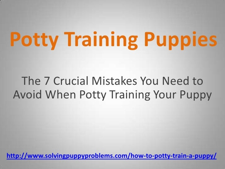Potty Training Puppies - The Crucial Mistakes You Need to Avoid