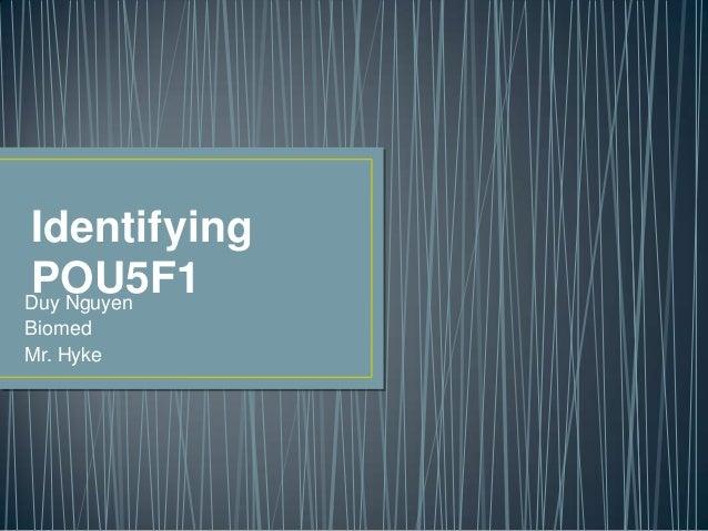 IdentifyingPOU5F1Duy NguyenBiomedMr. Hyke