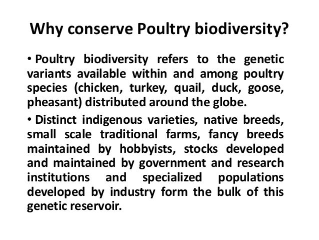 Why conserve Poultry biodiversity? • Poultry biodiversity refers to the genetic variants available within and among poultr...