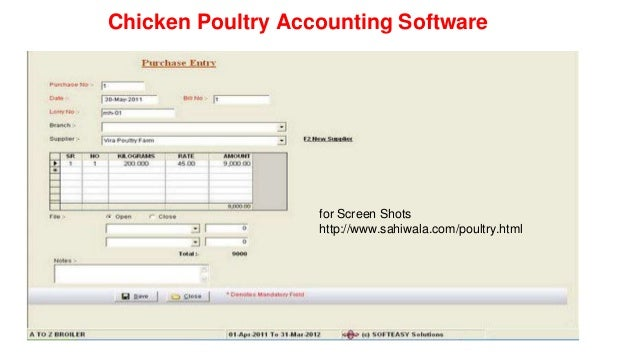 poultry layer business plan