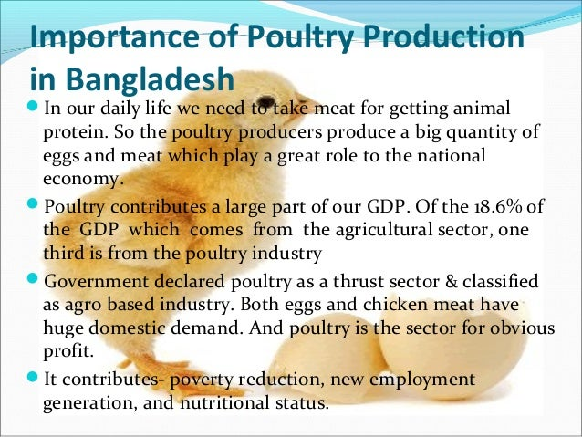 porter model of poultry farm in bd 2 family poultry training course trainee's manual purpose: to provide both women and men with sufficient information and knowledge to allow them to farm poultry in a commercial and semi-commercial way, and to decide if they can make money out of the venture.